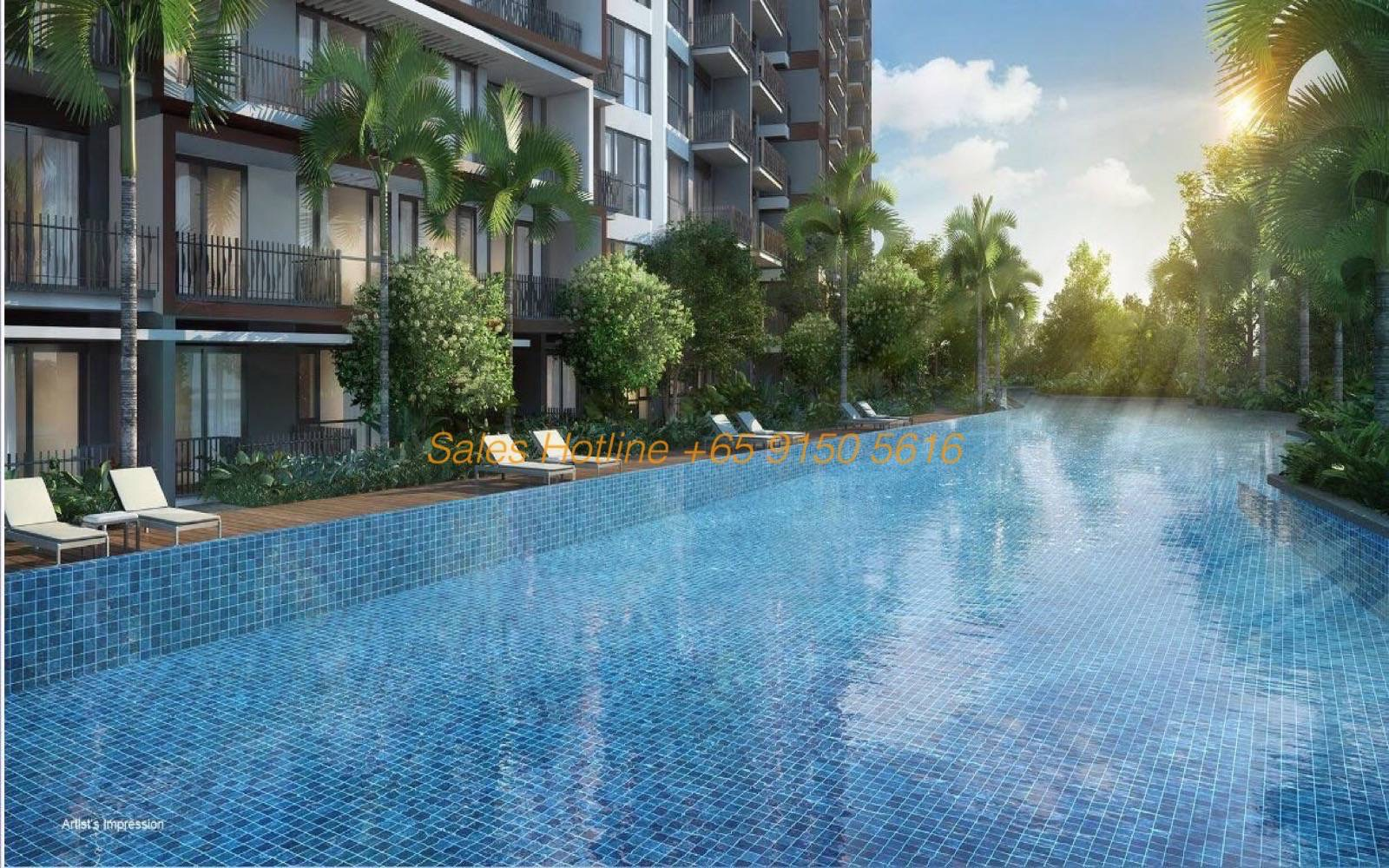 Forest Woods condo - Swimming pool