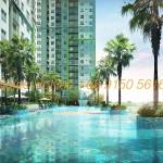 Seasons Avenue Hanoi CapitaLand - Pool