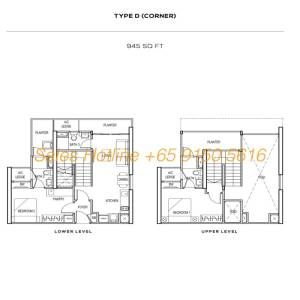 The Colony Floor Plan - Type D (Corner)