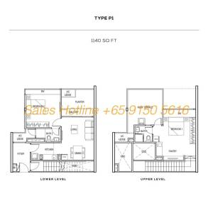 The Colony Floor Plan - Type P1