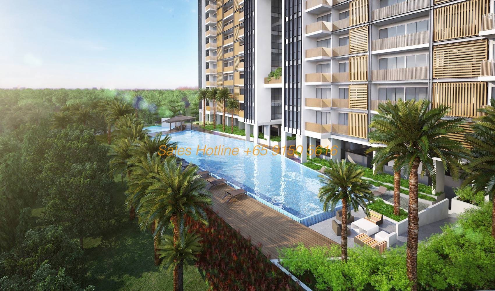 Tre Residences - Lap Pool